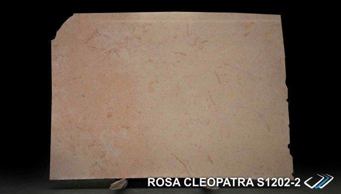 rosa-cleopatra